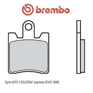 Sym GTS125/250/ 조이맥스EVO300i 카본 for 프론트 캘리퍼 오토바이 브레이크패드 브렘보