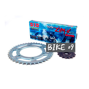 DID 525ZVM-X BMW F800GS(06-08) (K72) (Sprocket Holes Ø 8,5), -1T 골드체인 116 15/42 대소기어체인세트
