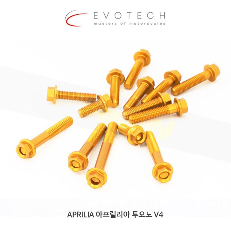 에보텍 APRILIA 아프릴리아 투오노 V4 (11-15) 엔진 볼트 킷