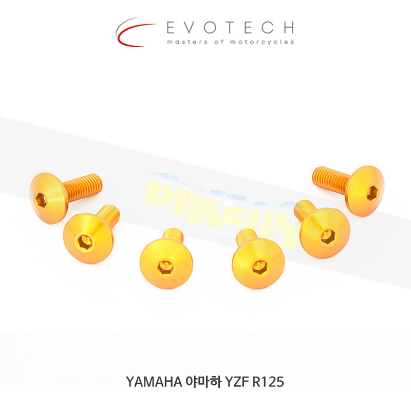 에보텍 이탈리아 YAMAHA 야마하 YZF R125 (14-16) 스크린 볼트 킷 08
