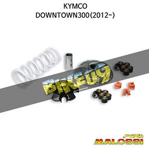 킴코 KYMCO 다운타운300(2012-) VARIATOR MULTIVAR 2000 말로시 구동계 튜닝 파츠
