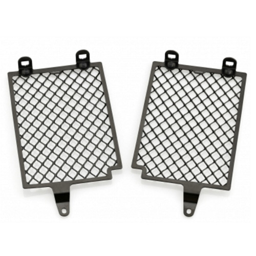 리조마 BMW R1200GS (2015 - 2016) Radiator Screen