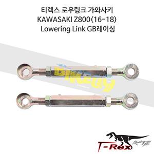 티렉스 로우링크 가와사키 KAWASAKI Z800(16-18) Lowering Link GB레이싱
