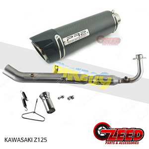 제드 튜닝파츠 가와사키 KAWASAKI Z125 PR2 풀시스템 머플러 로우 마운트 카본